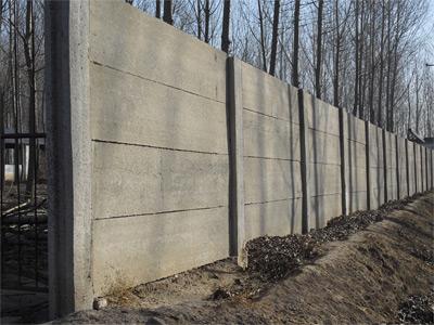 Muro Común